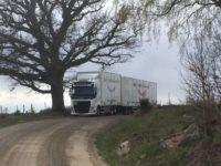 Lastbil med släp i naturen